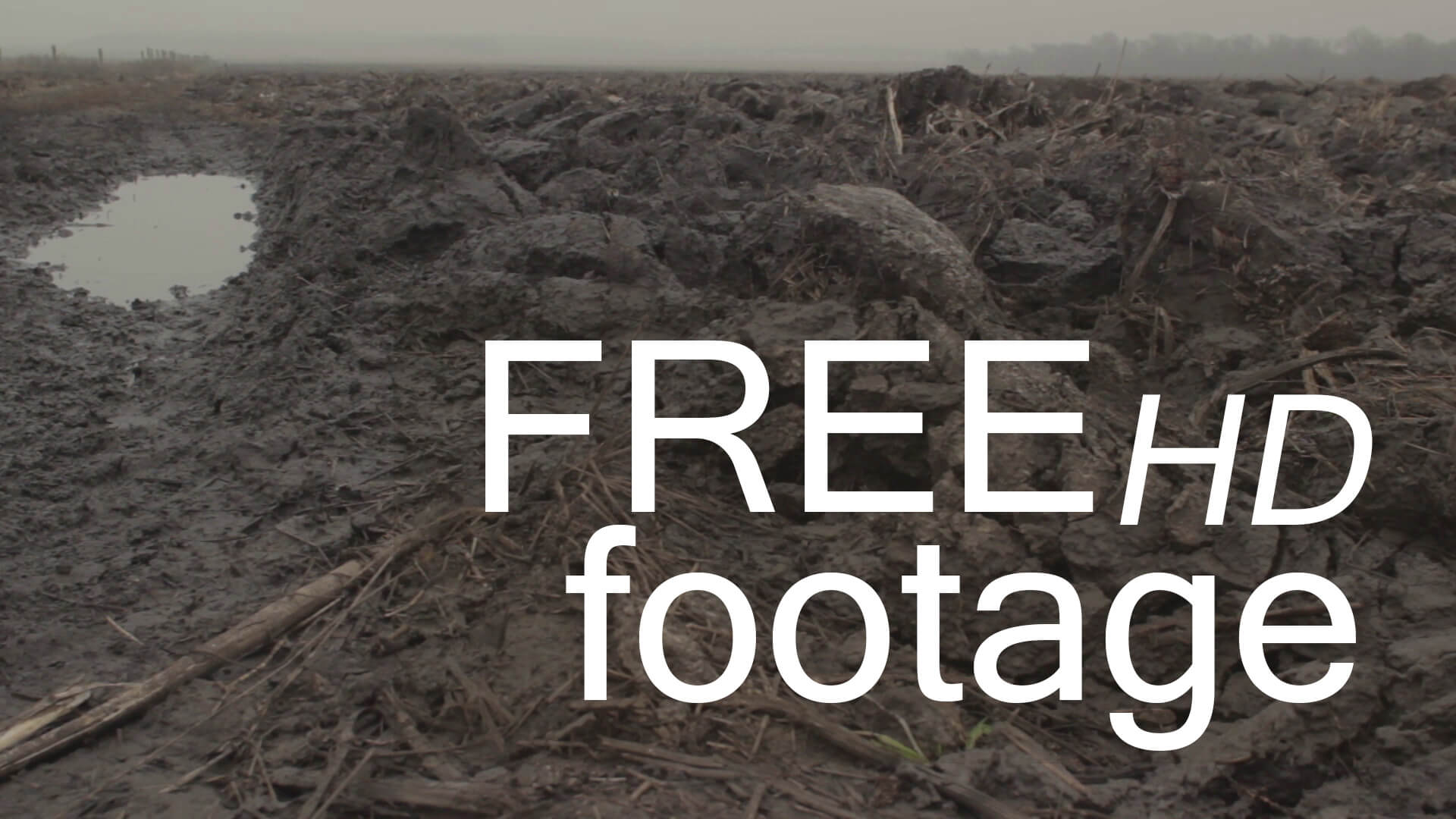 fog and field free hd footage d -